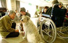 多死社会で終末期医療が変わる――2020年「日本の姿」