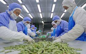 中国の冷凍食品は安全か? 気になる衛生管理、残留農薬問題の現在地