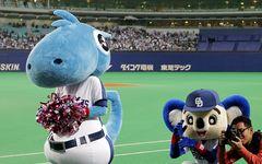 地元テレビに見るプロ野球愛 ホークスは「貪欲」、カープは「淡々」、ドラゴンズは?