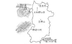 地方は消滅しない――奈良県野迫川村の場合