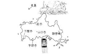地方は消滅しない――山口県萩市見島の場合「幻の牛と生きる」