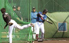 清宮幸太郎を育てるというファイターズの「球史に対する責任」