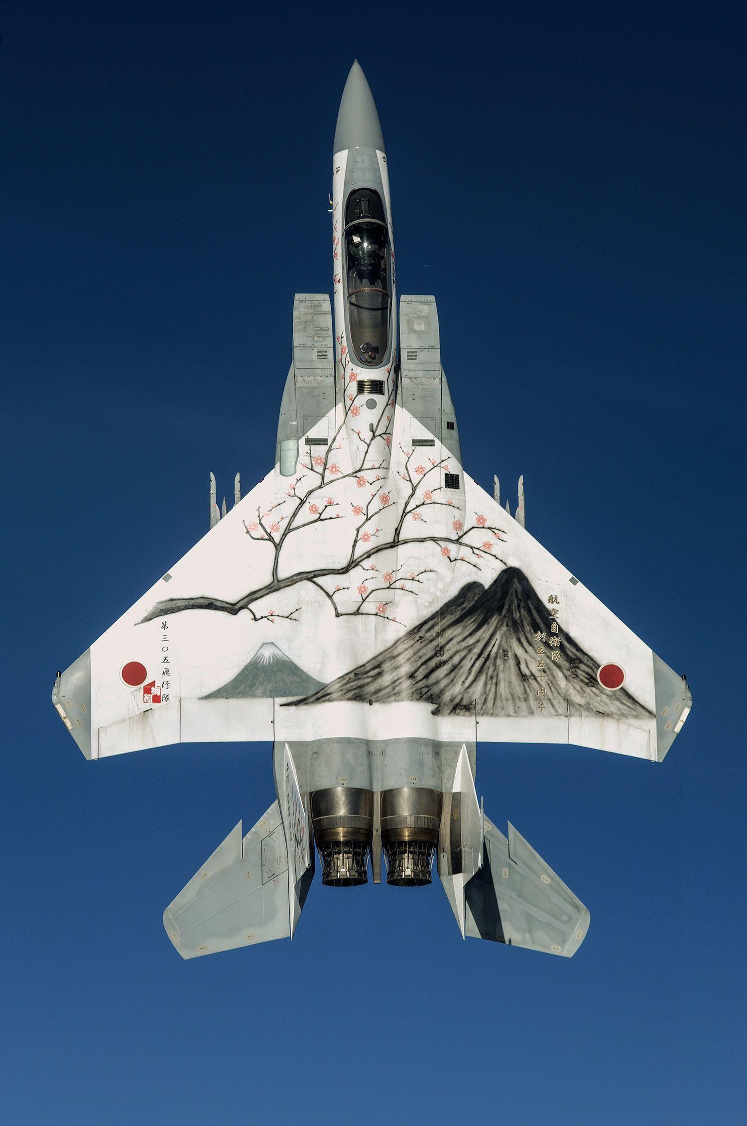 ボーイングF-15J(生産国アメリカ) 「梅に筑波山と富士山」を模した航空自衛隊の記念塗装機