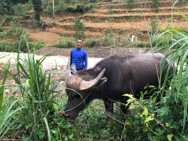 ラブドール仙人の館に泊まり、翌朝に起きて最初に出会った相手が水牛。近所の農家のおっさんがいい笑顔である ©安田峰俊