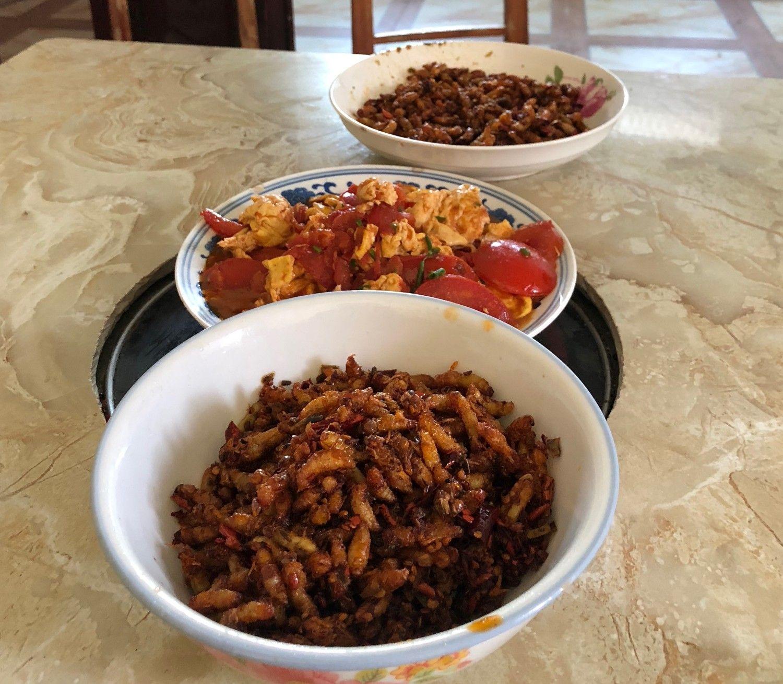 仙人の朝ごはんは虫。カリカリしていておいしい。エビだと思って食べればよい ©安田峰俊