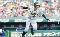 """ブレイク寸前、""""植田海くん""""はタイガースの野球を変えるか"""