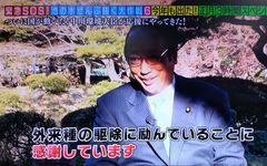 正論だけど、なんだかなぁ。『池の水ぜんぶ抜く』 ――亀和田武「テレビ健康診断」